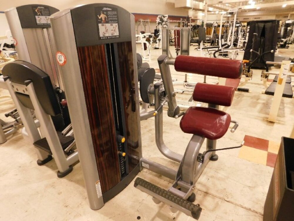 Life Fitness Back Extension Machine